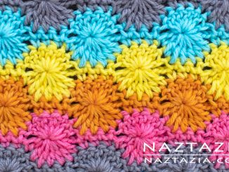 Catherine's Wheel Crochet Stitch from Stitchorama Collection