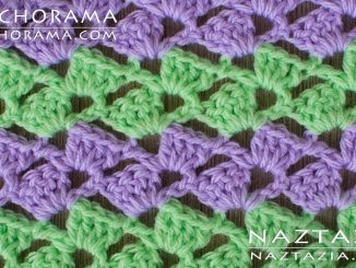 Crazy Slanted Shell Stitch from Stitchorama Collection