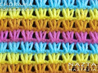 Tunisian Crochet Shell Stitch from Stitchorama Collection